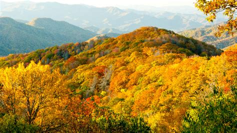 best scenic road trips in usa the top 10 scenic fall road trips in america aol features