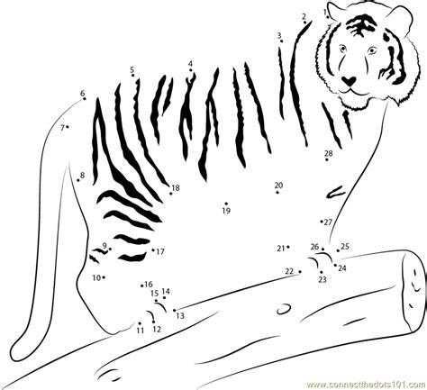 printable tiger dot to dot tiger on wood dot to dot printable worksheet connect the