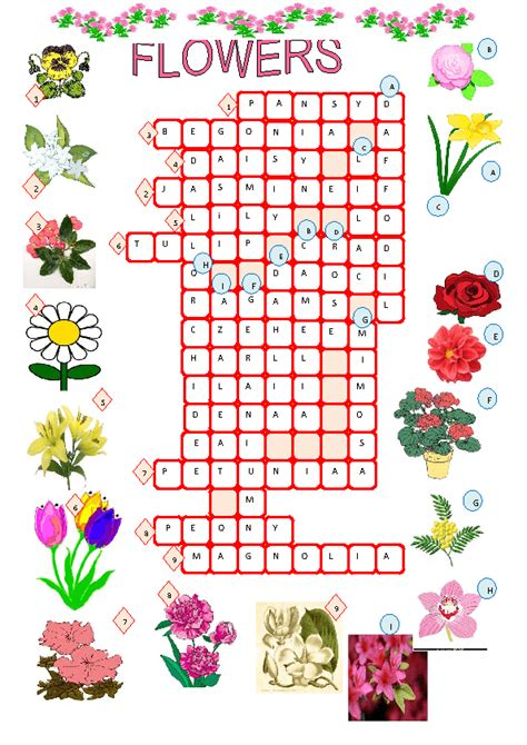 tropical plant crossword clue coloring pages of flowers with names bestsellerbookdb
