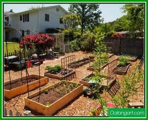backyard vegetable garden ideas home landscaping