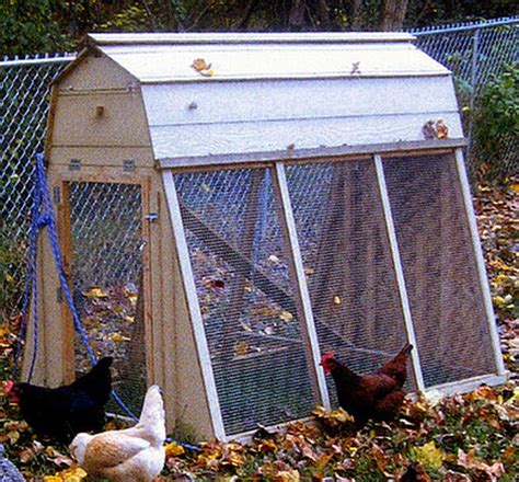 Backyard Chicken Coop Ideas by Chicken Coop Ideas Designs And Layouts For Your Backyard Chickens Removeandreplace