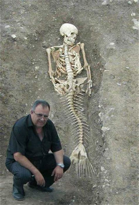 Mermaid Body Found | mermaids are real says the national oceanic and
