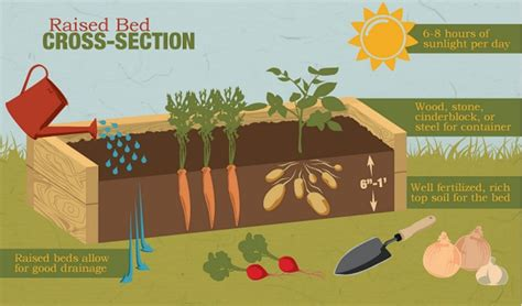 raised bed construction an easy guide to building raised gardening beds home design garden architecture