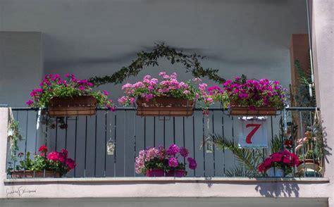 concorso balconi fioriti termoli concorso dei balconi fioriti c 232 tempo fino a