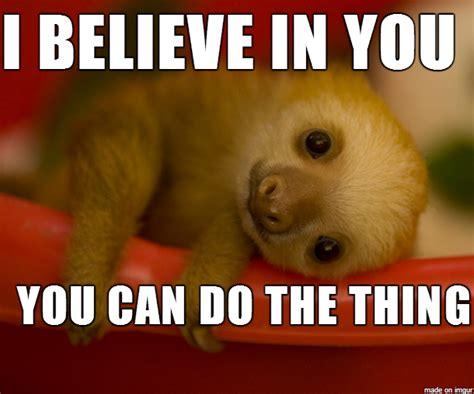 motivational sloths google search sloth animals cute