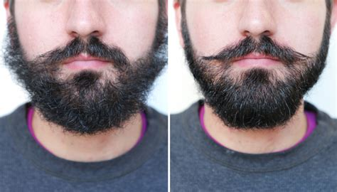 gif guide how to tame a wild and bushy beard