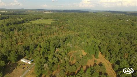 Northeast Alabama Hunting Property With Building Sites   Fort Payne   Whitetail Properties