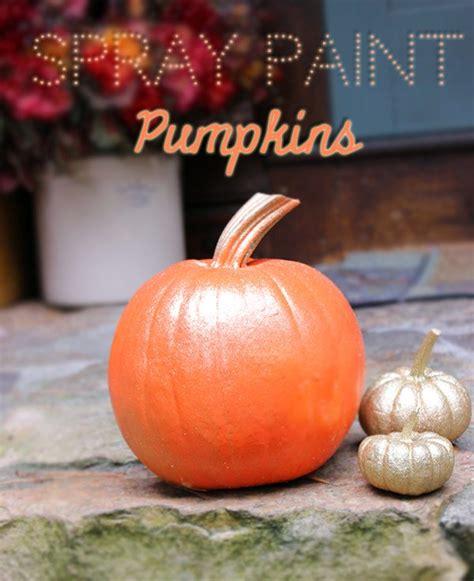 spray painting pumpkins diy spray paint pumpkins homemaking hacks