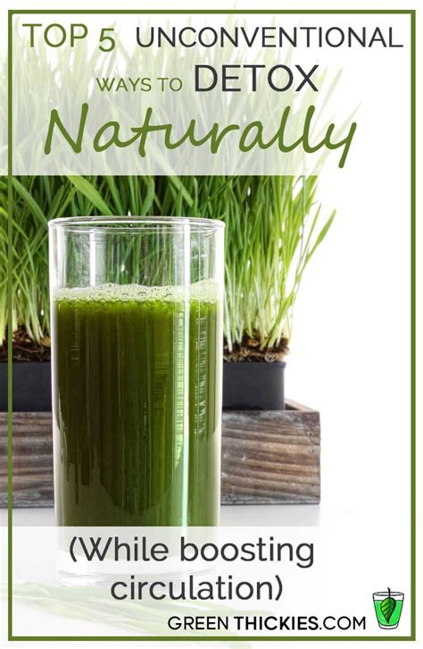 How Does Circulation Help Detox by 1000 Images About Green Thickies Posts On