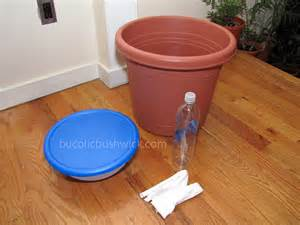 bucolic bushwick diy self watering planter how to