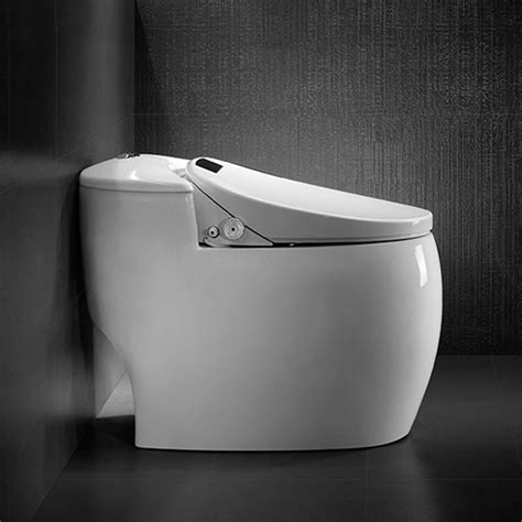 Japanese Toilet Bidet Combination by Intelligent Toilet Find Japanese Bidet Toilet Combo On