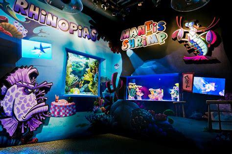 florida aquarium aquarium  tampa florida