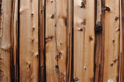 Knotty Pine Lumber Knotty Pine Wood Background Photograph By Brandon Bourdages