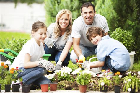 family gardening a garden the lasagna method simplifies gardening