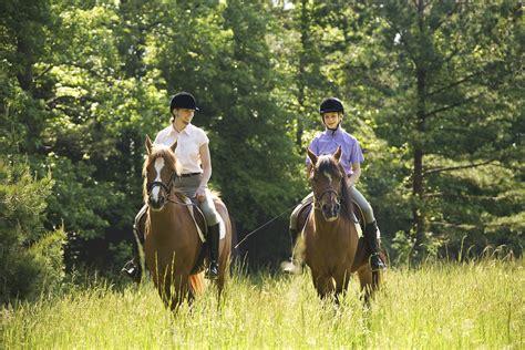 ride  horse   walk