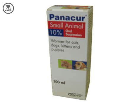 panacur dosage for dogs panacur cats related keywords panacur cats keywords keywordsking