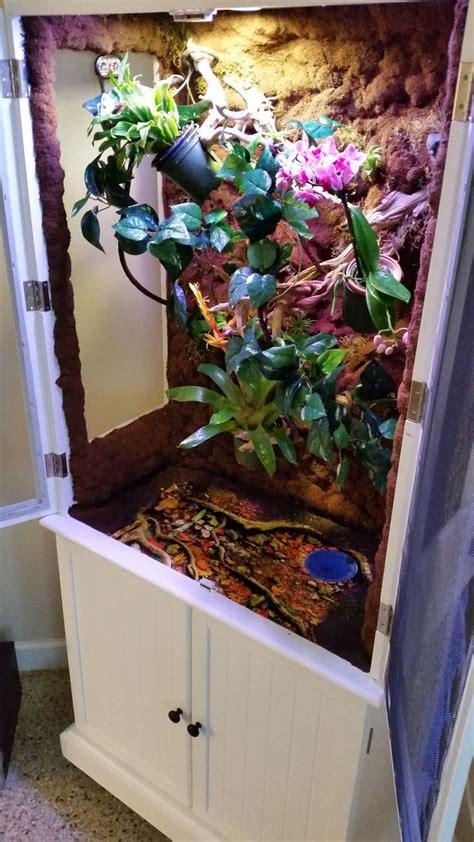 images  diy chameleon enclosure vivarium