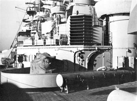 Bismarck Gallery Theme Port Aft Section