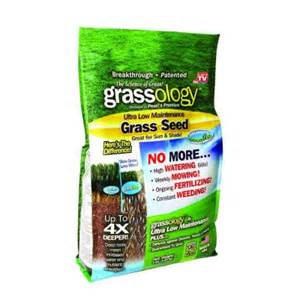 home depot seeds grassology 3 lb grass seed 7811 6 the home depot