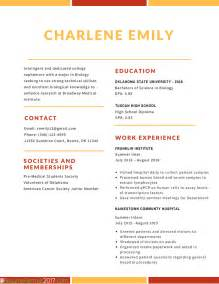 best professional resume templates human resource director