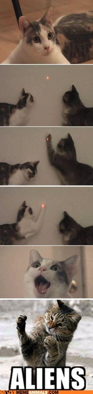 Cat Alien Meme - top
