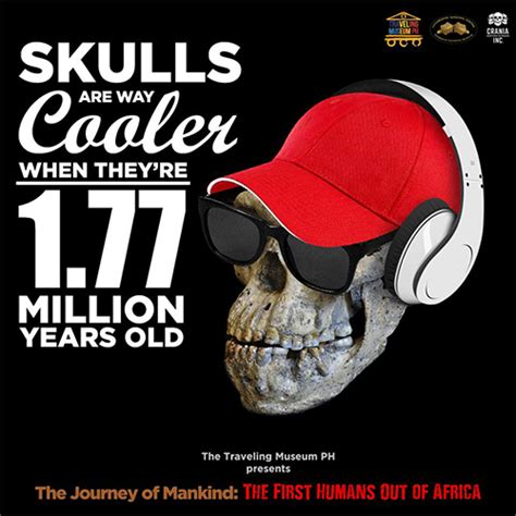 when the brook runs my journey from africa to america and back a few times books these million year skulls are a must see spot ph