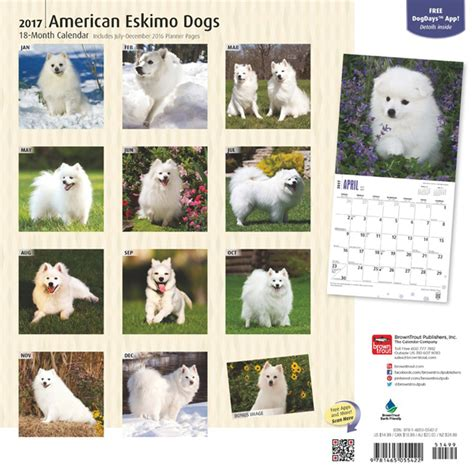 american eskimo price american staffordshire terriers puppies 2014 wall calendar furrypartners