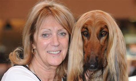 dogs look like owners with a cruftwork dogs can look like their owners nature news express co uk