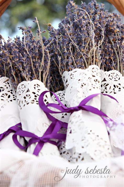 when is lavender in season in michigan 1000 ideas about lavender crafts on pinterest lavender
