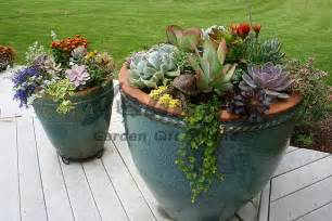 Large Succulent Planter by Companion Plants In Succulent Planters
