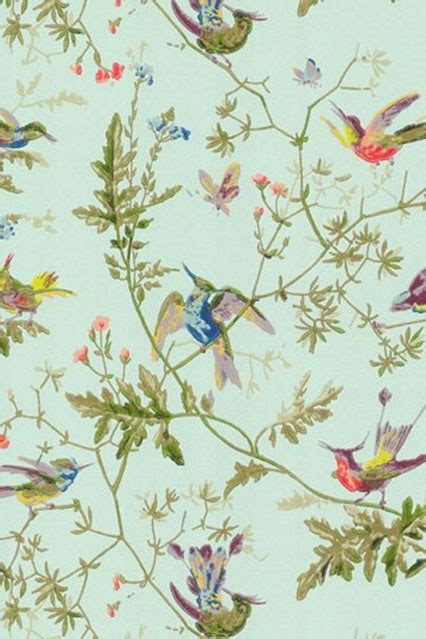 bird wallpaper for walls wallpaper ideas designs living room bedroom houseandgarden co uk