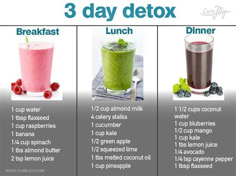 One Day Detox Fast by 3 Day Detox Smoothies Via Curejoy Food