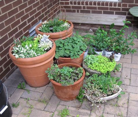 patio garden containers image result for http ak1 ostkcdn images