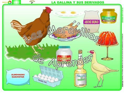 derivados de los animales derivados de la gallina productos derivados de la gallina imagui