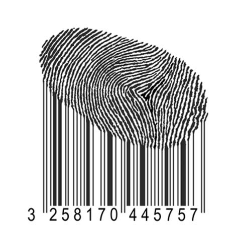barcode tattoo book pdf identit 233 num 233 rique pmtic