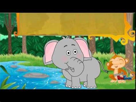 film kartun gajah dan monyet buku cerita sang gajah dan sang monyet youtube
