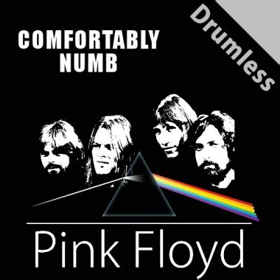 Play Comfortably Numb By Pink Floyd by Freedrumlesstracks Net