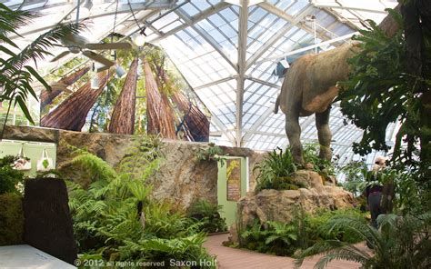 Bedroom Design 2017 Plantosaurus Exhibit At San Francisco Conservatory Of Flowers