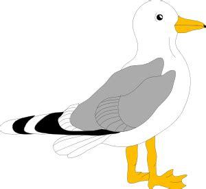 drawings of a sea bird clipart best sea bird clipart