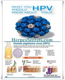 Hpv treatment herpes cure options genital herpes cure 2015