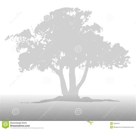 light grey wallpaper trees light gray tree background stock illustration image of