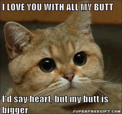 i love you with all my butt funny shit pinterest