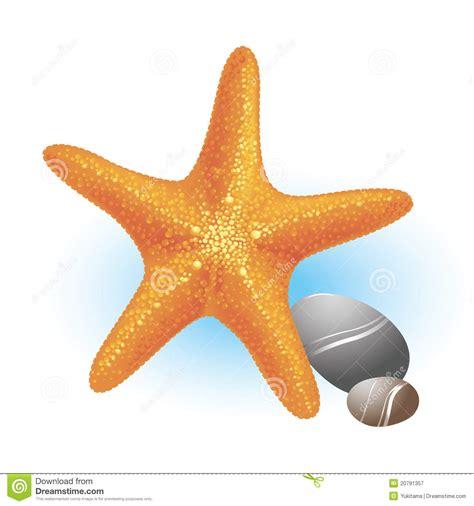 clipart mare stelle marine mare con le pietre illustrazione