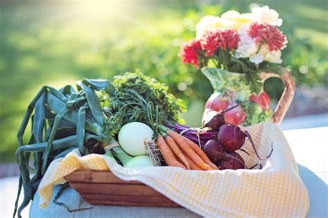 alimenti acido urico acido urico alto come controllarlo con l alimentazione