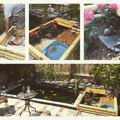 backyard turtle habitat 1000 ideas about turtle habitat on pinterest turtle tanks box turtles and tortoise