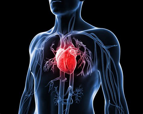 pattern of heart failure in a nigerian teaching hospital 3 out of every 10 nigerian has a cardiovascular disease