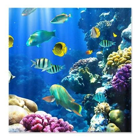 ocean life shower curtain ocean life shower curtains and ocean on pinterest