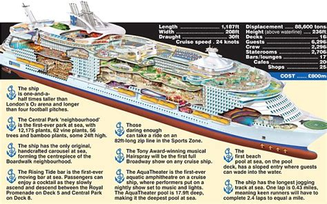 what is a sea section oasis of the seas the world s largest cruise ship really