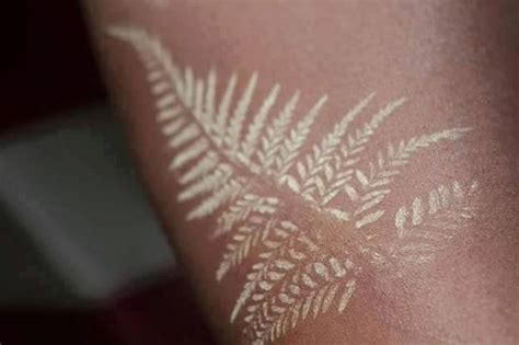 nz tattoo designs silver fern 20 fern tattoos tattoofanblog
