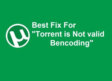 how to download torrent files with idm more than 1 gb